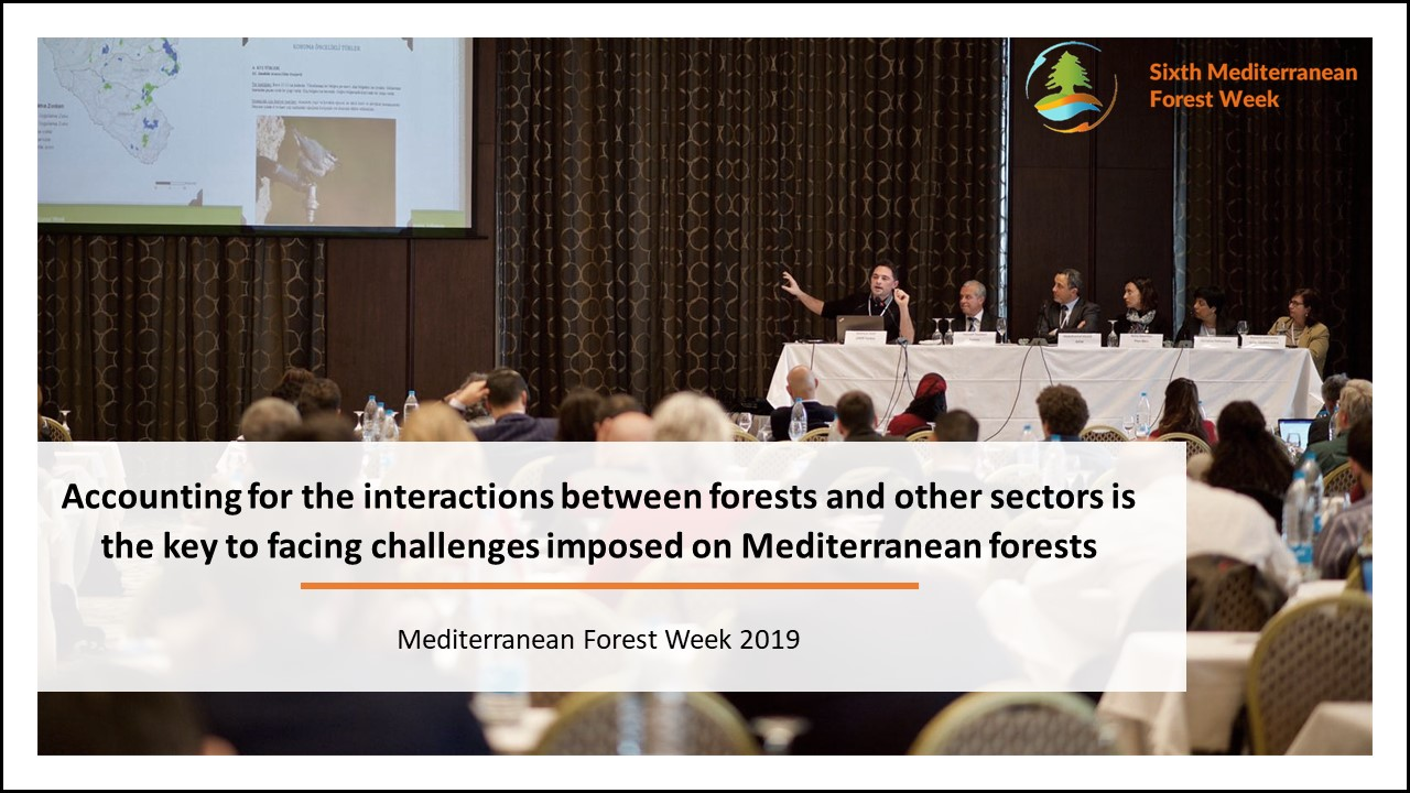 Forest based solutions link with other sectors