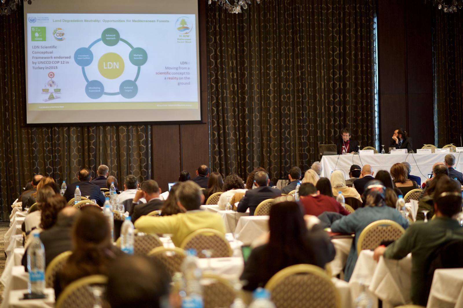 #MedForest week 2019 - Plenary session 1