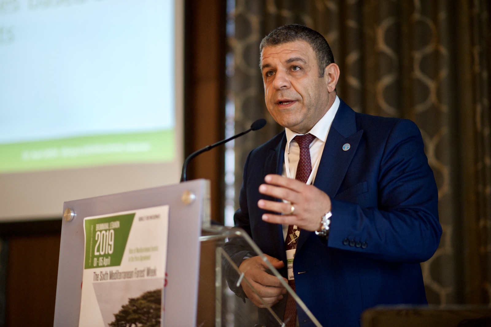 Nabil Assaf,FAO - Med Forest Week 2019